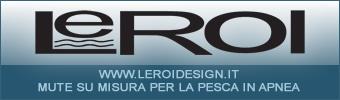 Leroi Design