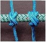 la durata degli elastici 6