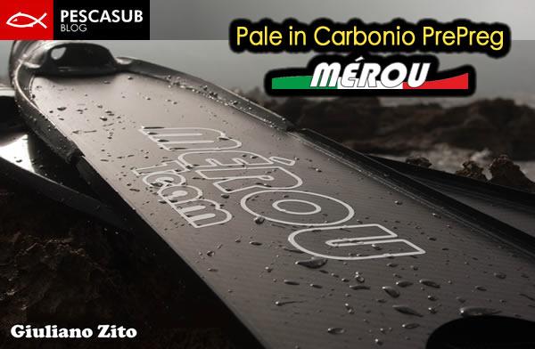 pale in carbonio prepreg mérou