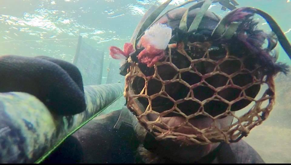 pikotech shade mask su bassofondo, montata su maschera
